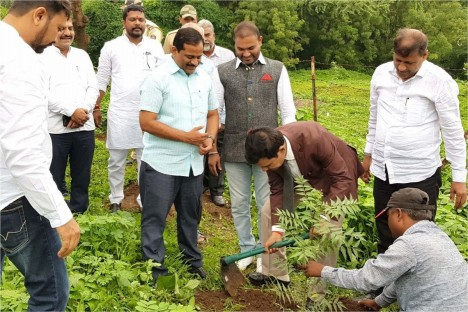 tree-plantation-event-organisation-participated-kishore-shitole-bjp-party